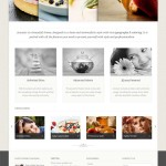 Acoustic wordpress theme