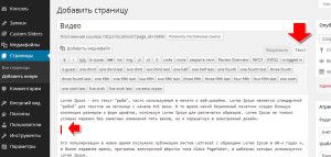 wordpress режим текст