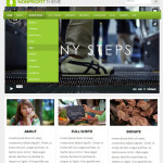 Премиум тема для WordPress NonProfit v4.1.6