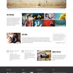 Премиум тема для WordPress Lotus v.2.3