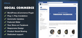 WooCommerce Facebook Plugin